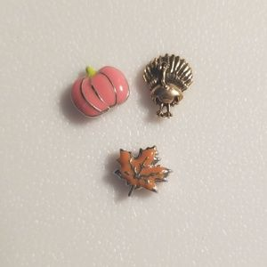 Origami Owl charms-Fall set